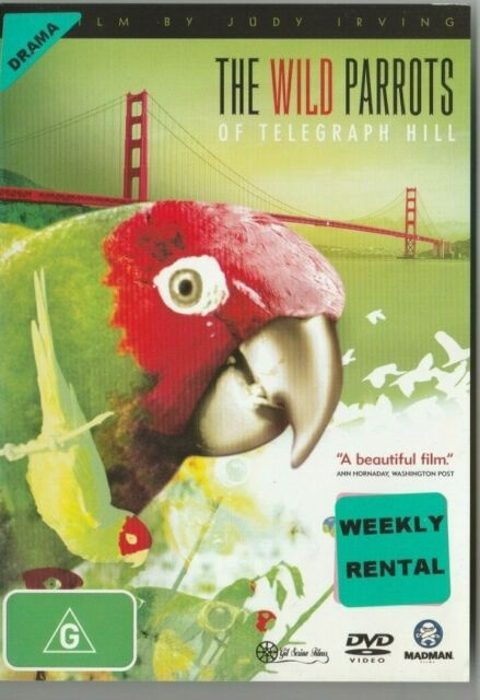 The Wild Parrots Of Telegraph Hill DVD - ExRental - All Regions