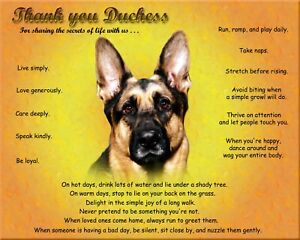 Details about German Shepherd Dog Picture/Wall Art-Personalized  w/Name-Unique Pet Lover's Gift