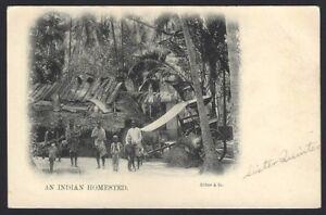 India AN INDIAN HOMESTEAD vintage UB postcard