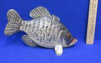 Black Crappie Fish Fishing Decor Lure Grand Daddy Baits Hand Painted Folk Art