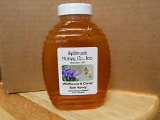 Fresh Raw Wildflower & Clover Honey from South Dakota 3 lbs right from beekeeper