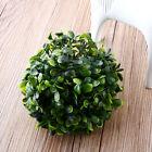 10cm *Marimo Moss Balls Plastic Aquarium Tank Decoration Plant Cladophora Fish