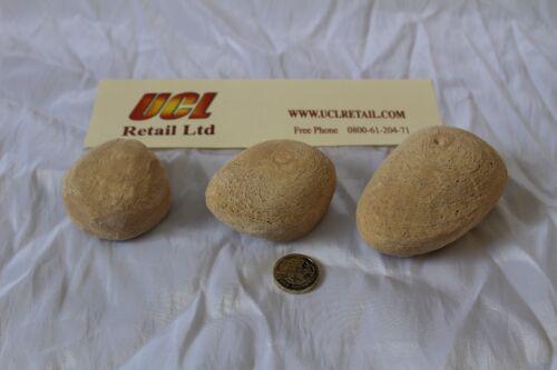 Remplacement gaz feu pebbles 5