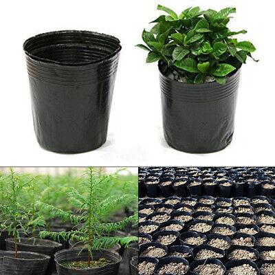 100Pk Garden Nursery Container Flowerpot Seedlings Growth Bulk Planter Container