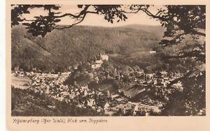 Schwarzburg-Thuer-Wald-Blick-vom-trippstein-Ansichtskarte-gelaufen