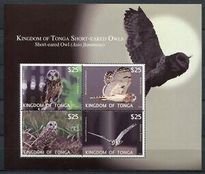 Tonga-2012-Eulen-Owls-Voegel-Birds-Block-57-Postfrisch-MNH