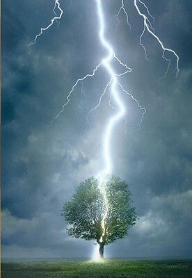 Jigsaw puzzle Landscape Lightning Striking a Tree 1000 piece NEW Made in USA
