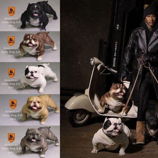 Mr Z 1/6 American bully dog Figure MRZ Animal Model Dogs Collect 001-005