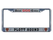 Plott Hound Dog Best Dog Ever Chrome Metal License Plate Frame Tag Border