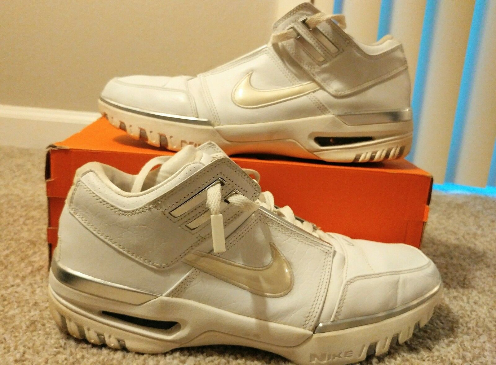 Lebron James Nike Generation Zoom Low 2004 Size 12