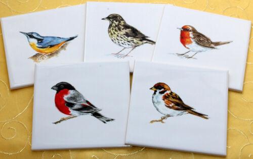 15x15 Küchenfliesen mit Vogeldekor 5er Set Kleiber,Drossel,Rotkehlchen,Spatz