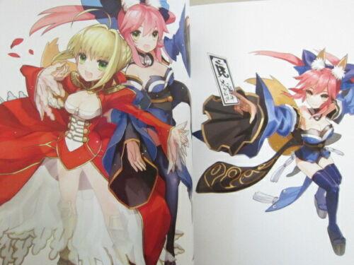 EXTRA Visual Fan Book Type-Moon Art Illustration Japan 2011 KD89* FATE