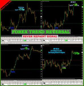 Forex reversal indicator best metatrader