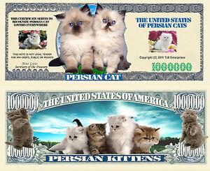 Felix the Cat Million Dollar Bill Fake Play Funny Money Novelty with FREE SLEEVE