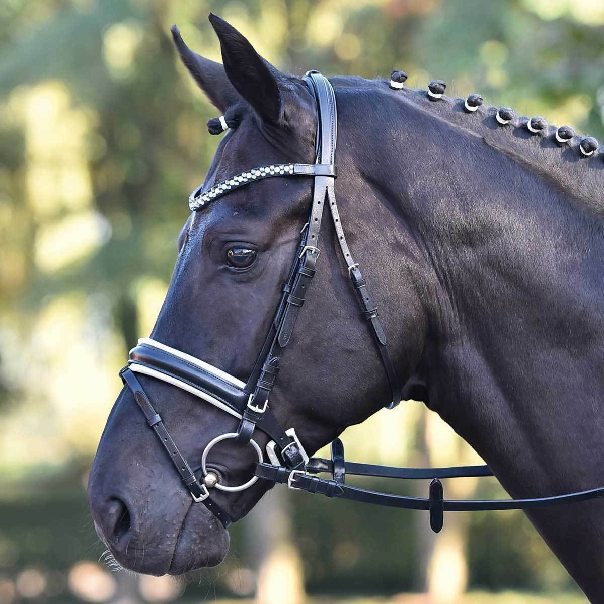 Busse Bridle  Comfort Rhinestone Leather English Combination Riding Halter With  outlet factory shop