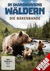In Skandinaviens Wäldern - Die Bärenbande (2016)