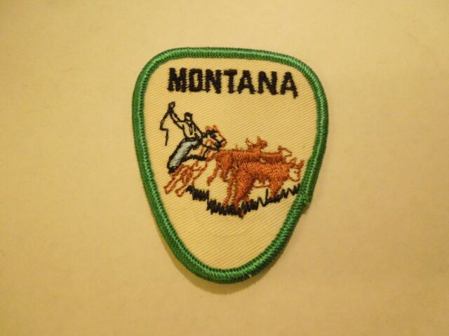 Vintage Sew On Horse Patch US SHIPPING FREE