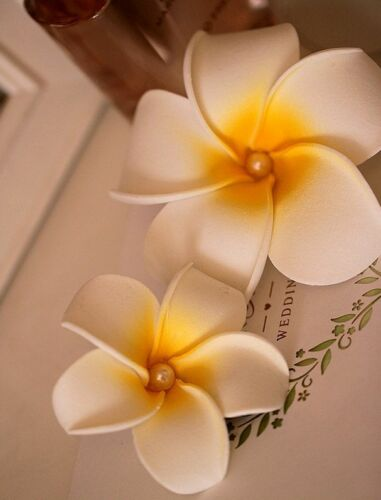 10 x Hawaiian Plumeria Flower With BeadFoam Hair Clip Hair Pins Hair Accessory