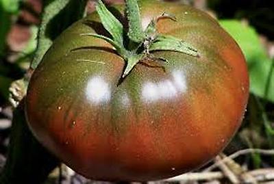 100 Seeds - Black Krim Heirloom Tomato