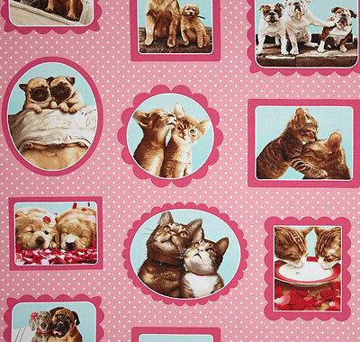 Kitty Cat Puppy Dog Cotton Fabric Frames Pink Robert Kaufman Hugs Kisses ~ Yard
