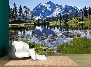 Mount Lake Rock Sky Cloud Forest Wall Mural Photo Wallpaper GIANT WALL DECOR