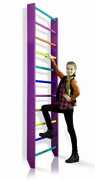 Swedish Ladder Climbing Wall Bars Wall Pull Up Bar & Home Ladder Home & Gym Playground 404b64