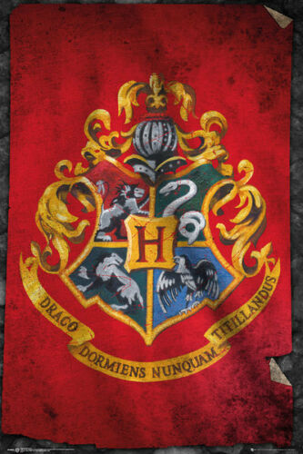Harry Potter Hogwarts Flag Wizarding World Maxi Poster Print 61x91.5cm24x36