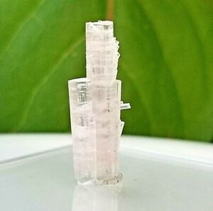 Natural-Pink-Tourmaline-Crystal-Collector-specimen-Christmas-gift-US-Seller