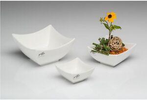 Porcelaine-vaisseaux-coques-Assiette-Ivoire-Sandra-Rich-zierschalen-steckschalen