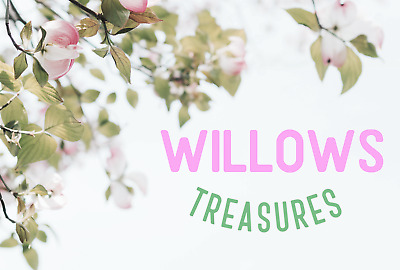 Willow's E-Treasure Chest