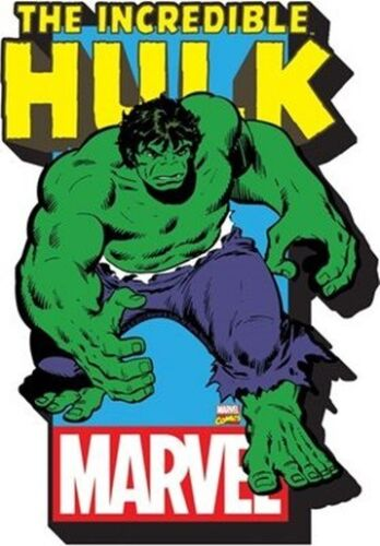 NEW UNUSED The Incredible Hulk Character Image and Name Logo 3-D Die-Cut Magnet