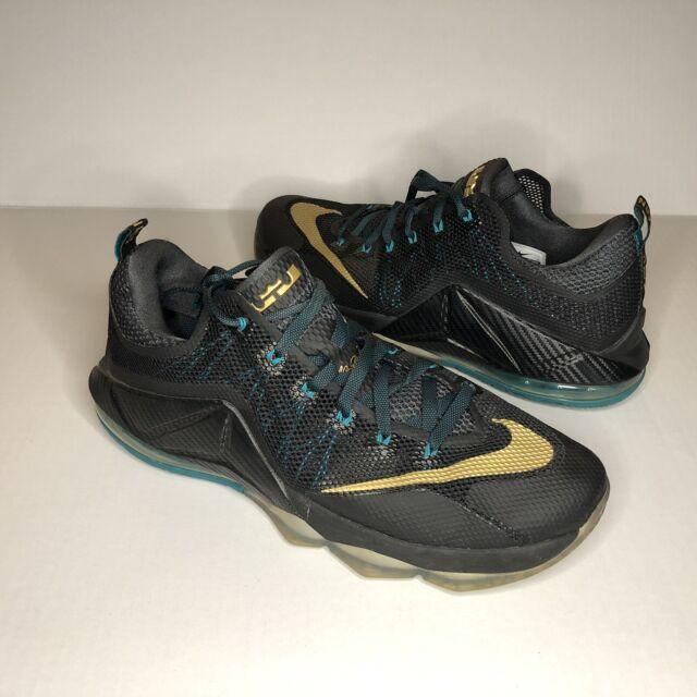 Nike Lebron XII 12 Low Boys Athletic