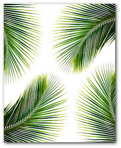 Palm Leaves Print Tropical Palm Leaf Print Palm Art 8 X 10 Inches Unframed Ebay The best selection of royalty free tropical leaves print vector art, graphics and stock illustrations. details about palm leaves print tropical palm leaf print palm art 8 x 10 inches unframed