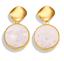 Boho-Sequins-Dangle-Drop-Hook-Acrylic-Resin-Ear-Stud-Earrings-for-Women-Jewelry thumbnail 6