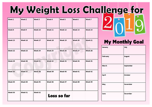 Details about Weight Loss Challenge 2019 Chart - Weight Watchers - Slimming  World - Pink