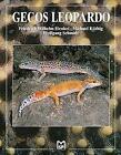 Leopardgeckos (spanisch) von M. Knöthig, F. W. Henkel und W. Schmidt (2008, Gebundene Ausgabe)