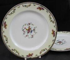 Haviland PLAZA 2 Luncheon Plates GREAT CONDITION