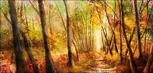 KEN Roko   FORESTA Pathway barella-immagine Schermo ALBERI STRADA STRADA STRADA MODERNO cfbe4b