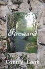 Firewand by Connie Cook (Paperback / softback, 2013)