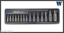 Welzh ribattini-Impact-T-STAR Torx-t6-t70 Socket Set - 15 PZ PRO Qualità