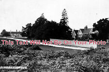 BU 11 - Fingest Grove, Buckinghamshire c1911 - 6x4 Photo