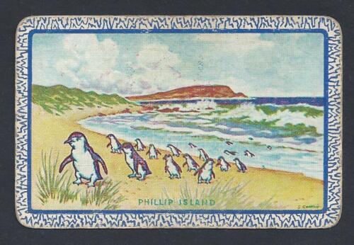 "Aust Named FAIR /""Phillip Island/"" with penguins #150.357 vintage swap card"