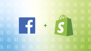 Shopify Ecommerce Dropshipping Facebook Ads Masterclass Online Course