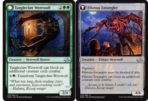 N Mint Eldritch Moon Uncommon 4 x Tangleclaw Werewolf // Fibrous Entangler