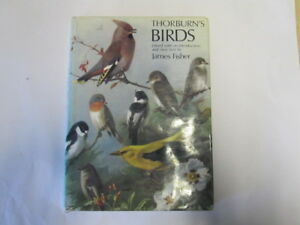Good  THORBURNS BIRDS  EDITED BY JAMES FISHER 19770101 Covered in clear pla - Ammanford, United Kingdom - Good  THORBURNS BIRDS  EDITED BY JAMES FISHER 19770101 Covered in clear pla - Ammanford, United Kingdom