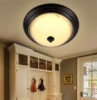 European Style Black Iron Glass Width 280MM LED Creative Ceiling Lamp/Light *