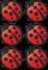 Lady-Bird-Vinyl-Decals-Stickers-Graphics-Nursery-Wall-Window-Decoration-Art-cars thumbnail 4