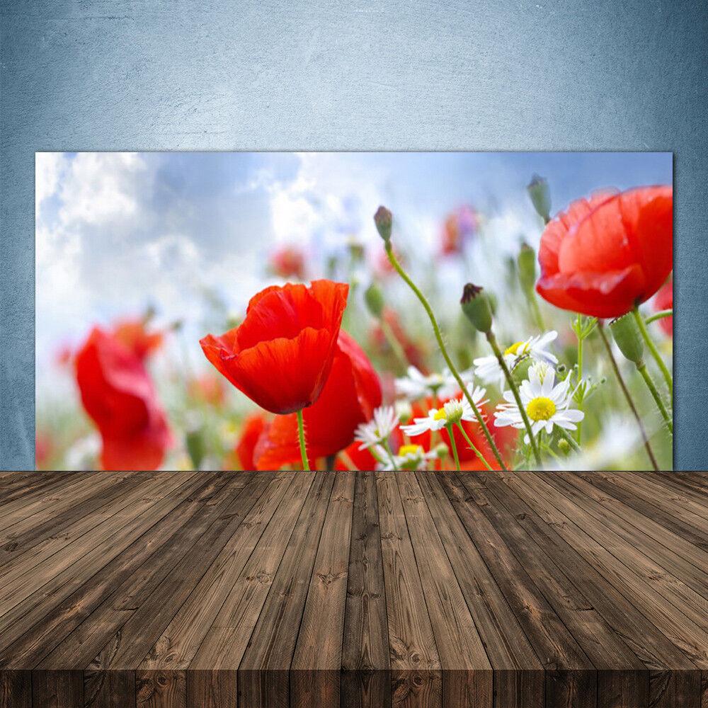 Crédence de cuisine en verre Panneau 140x70 Floral Marguerites Pavot