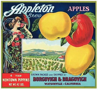 Original vintage apple crate label c1915 JML Eagle Watsonville California Stone Lithograph Scarce