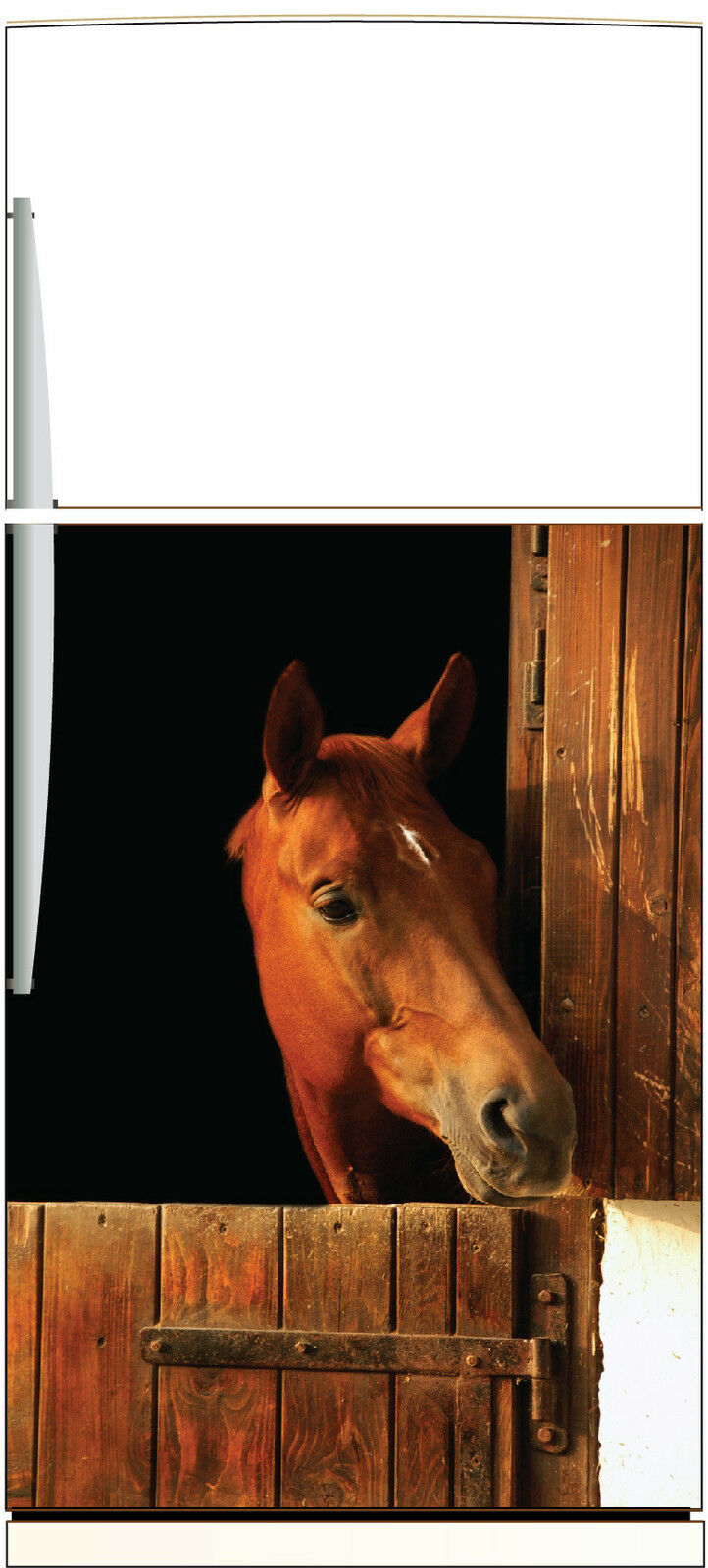 Adesivo frigo elettrodomestici decocrazione cucina Cavallo 60x90cm Ref 1384